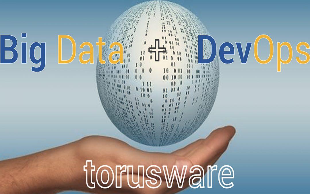 TORUS SOFTWARE SOLUTIONS, S.L.